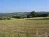 Netherton Another Great View